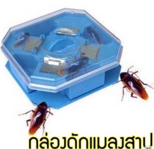 กล่องดักแมลงสาบ ไม่ใช้ไฟฟ้า Cockroach Trap Box